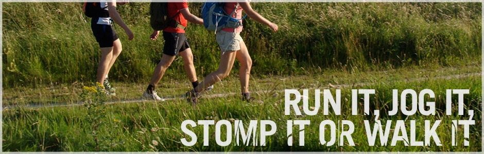 Race to the Stones - The Hibbs Lupus Trust.jpg
