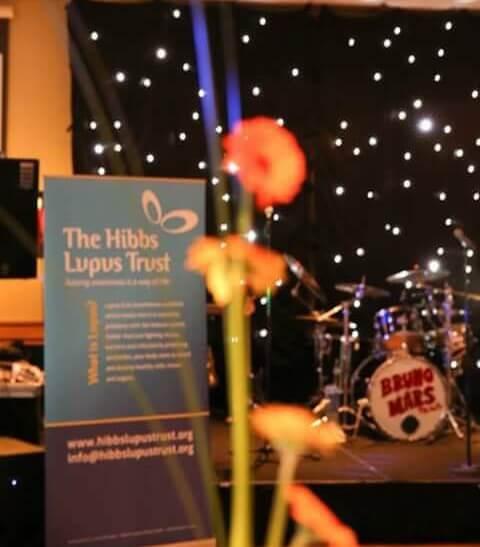 Summer Ball 1 - The Hibbs Lupus Trust
