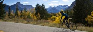 London to Geneva Cycle - The Hibbs Lupus Trust