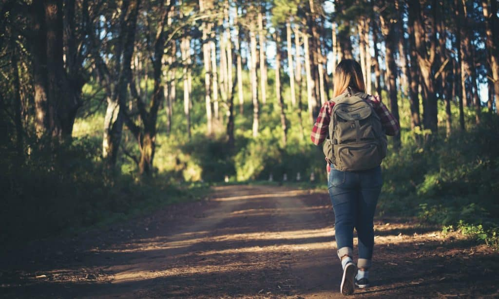 The Hibbs Lupus Trust - Shielding Walk